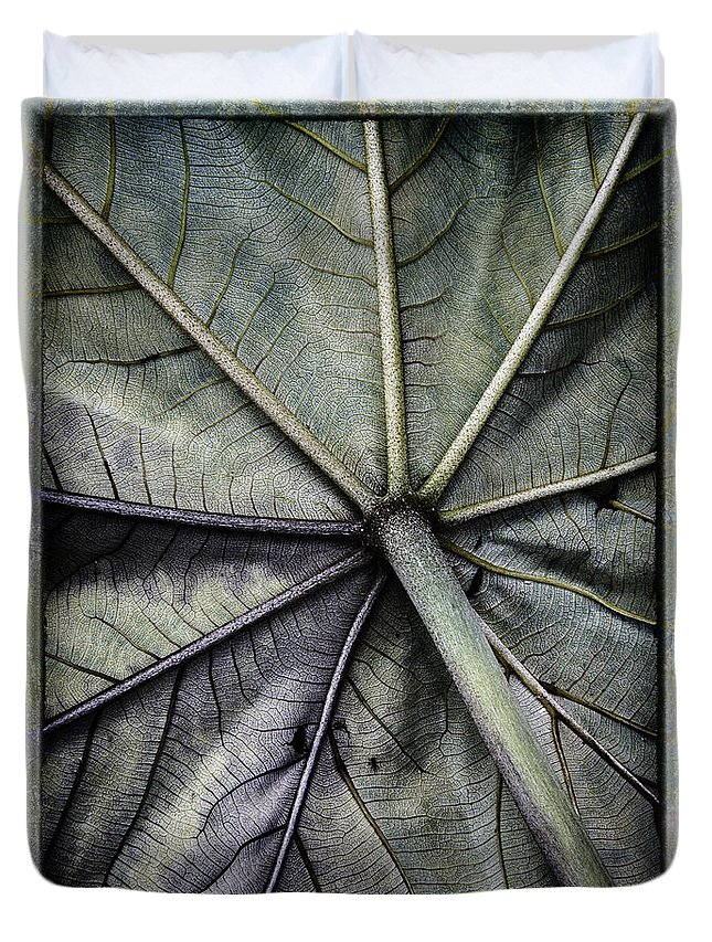 Leaf Duvet Cover featuring the photograph Mounts Botanical Gardens 2360 by Bob Neiman