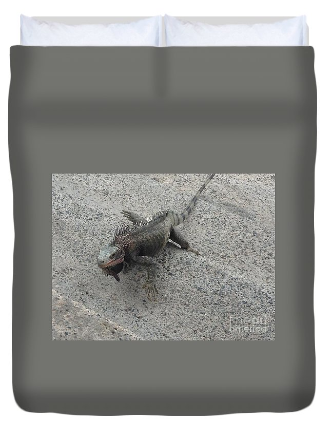 Iguana Duvet Cover featuring the photograph Moving Right Along by Gina Sullivan
