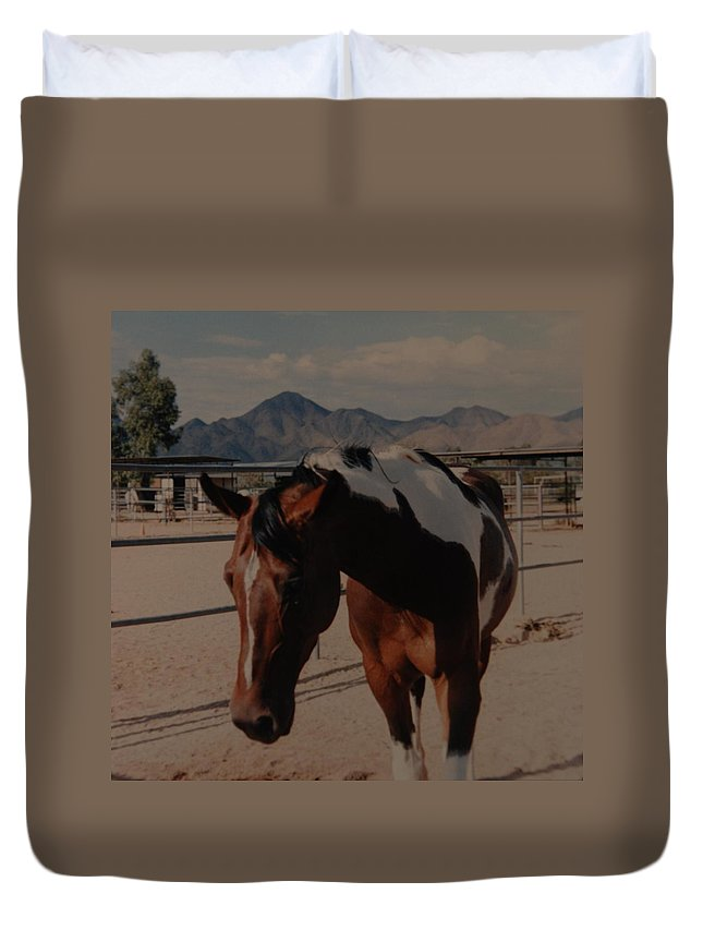 Horse Duvet Cover featuring the photograph Mr Ed by Rob Hans