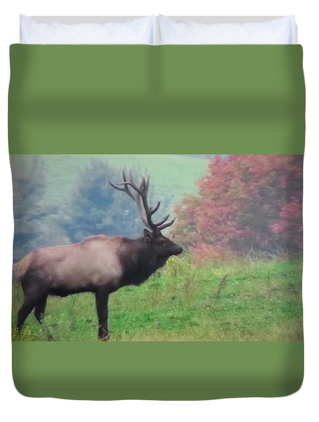 Elk Duvet Cover featuring the photograph Mr Elk Enjoying The Autumn by Jeanette Oberholtzer