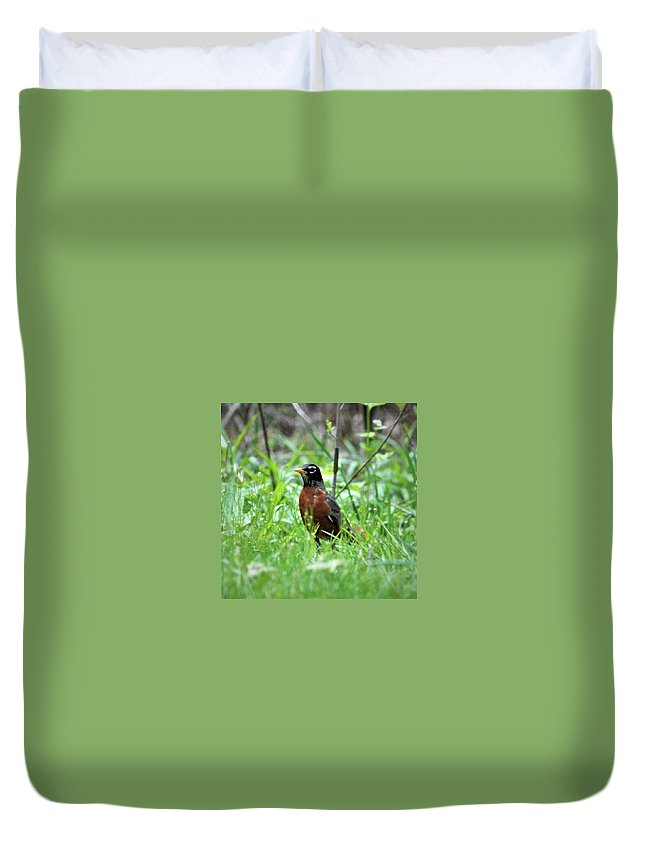 Robin Duvet Cover featuring the photograph Mr. Spring by Dennis Symes
