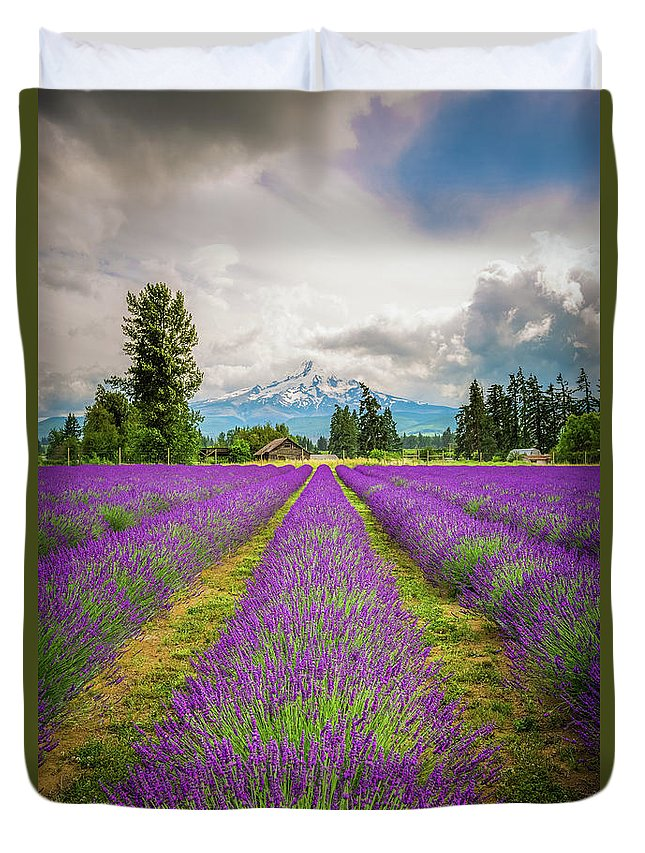 Oregon Duvet Cover featuring the photograph Mt. Hood And Lavender by Jean-Claude Ardila