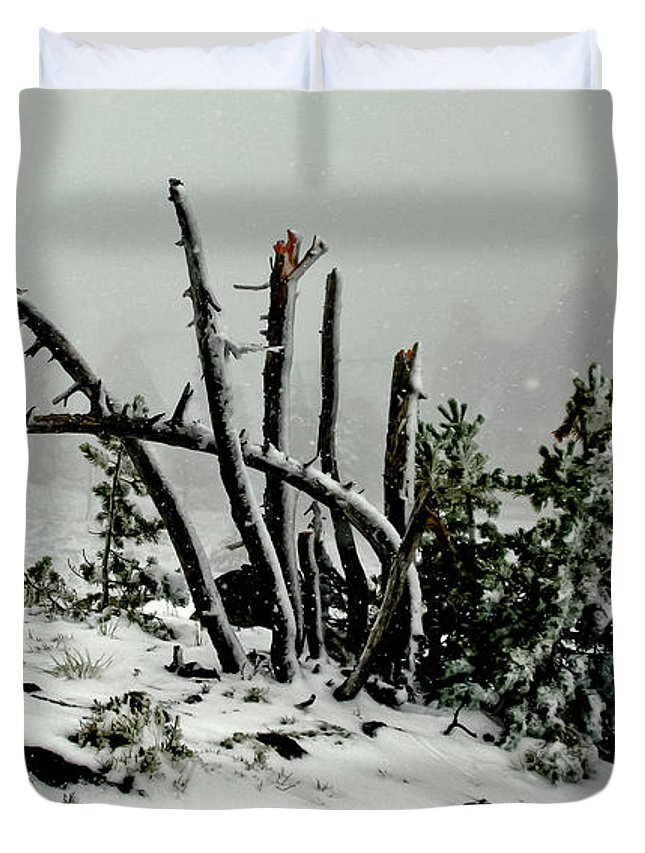 Snow Duvet Cover featuring the photograph Mt Hood Snow by Albert Seger