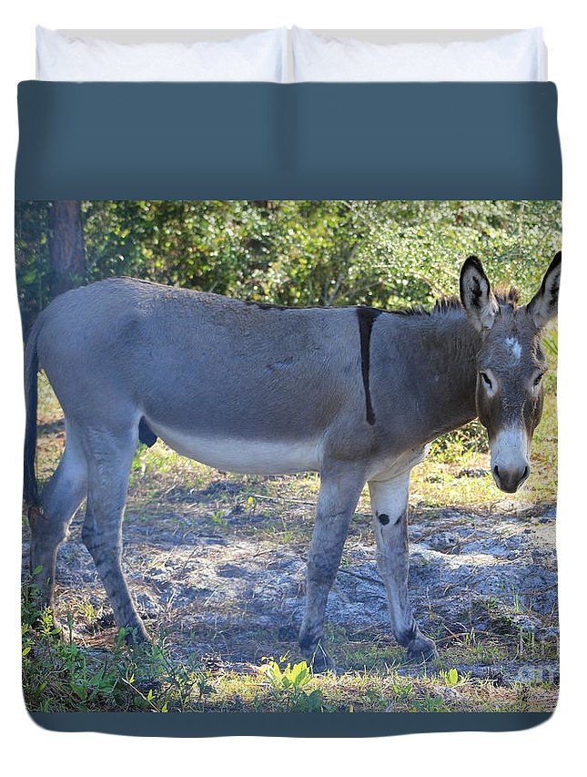 Mule Duvet Cover featuring the photograph Mule In The Pasture by Michelle Powell