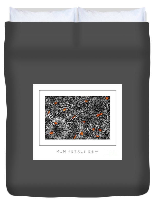 Chrysanthemum Duvet Cover featuring the photograph Mum Petals Bw Poster by Mike Nellums