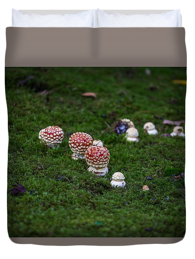 Mushroom Duvet Cover featuring the photograph Muscaria Migration by Calazone's Flics