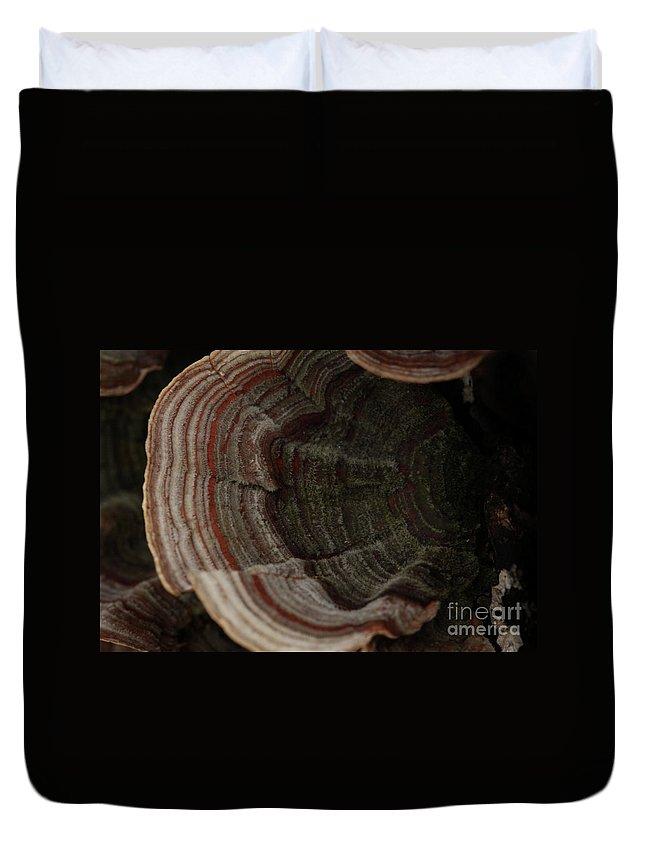 Mushroom Photography Duvet Cover featuring the photograph Mushroom Shells by Kim Henderson