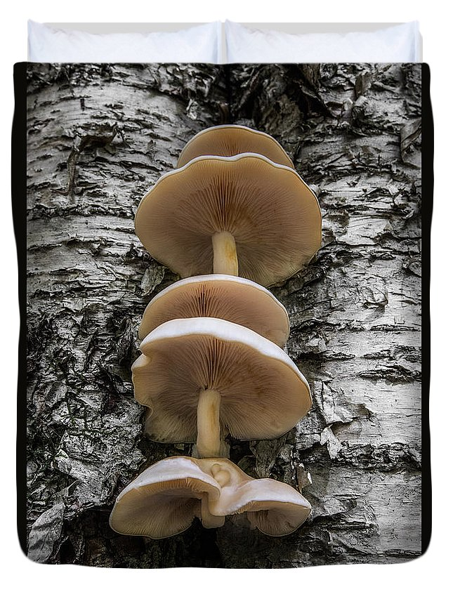 Mushroom Duvet Cover featuring the photograph Mushroom Treehouse by Chris Whiton