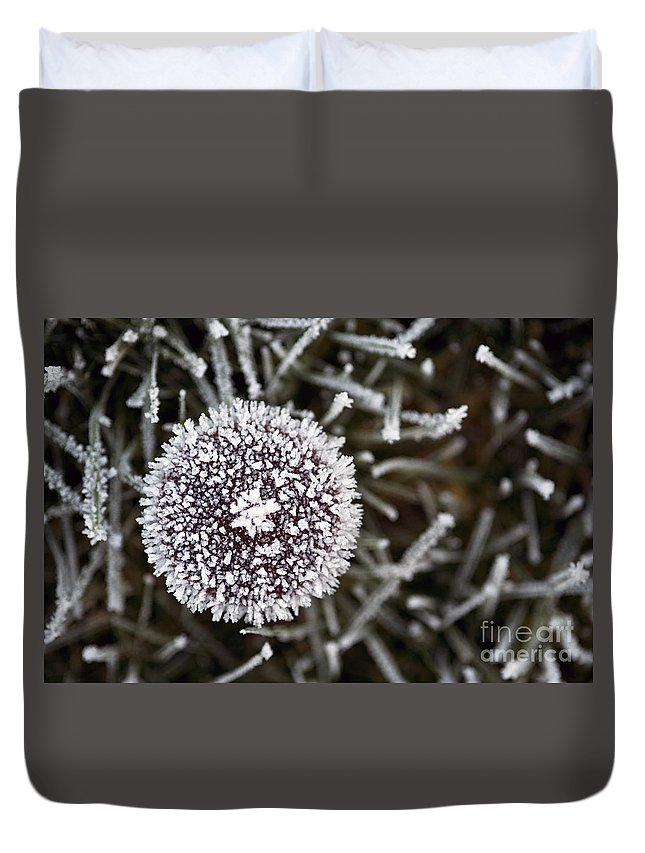 Beads Of Water Duvet Cover featuring the photograph Mushroom With Ice Crystals by Jim Corwin