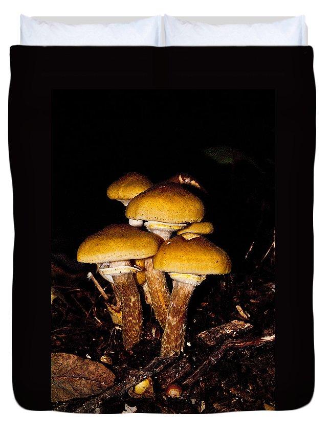 Mushrooms Duvet Cover featuring the photograph Mushrooms By Night by Douglas Barnett