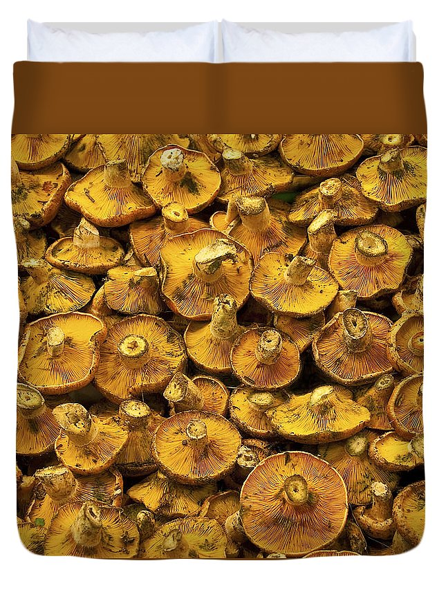 Mushroom Duvet Cover featuring the photograph Mushrooms In Spain by Steven Sparks