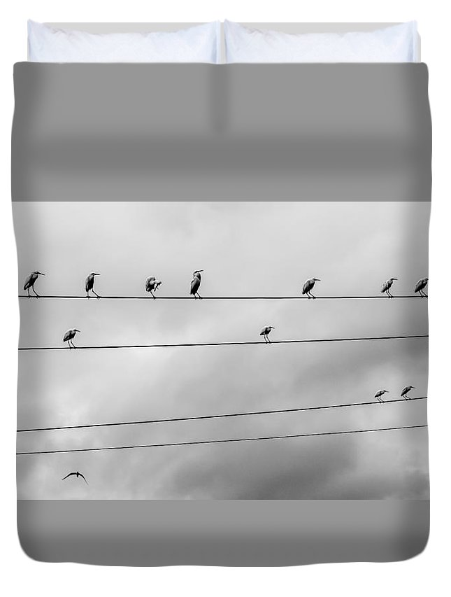 Abstraction Duvet Cover featuring the photograph Musical Score by Victor Fernandes