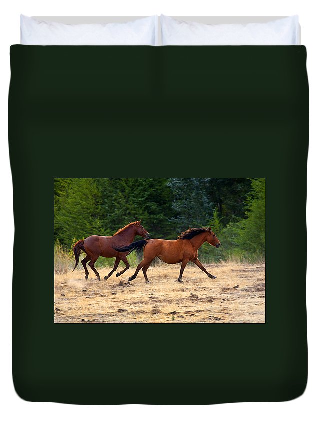 Wild Duvet Cover featuring the photograph Mustang Gallop by Mike Dawson