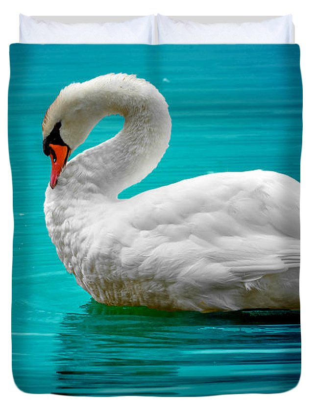 Duvet Cover featuring the photograph Mute Swan 4 by Brian Stevens