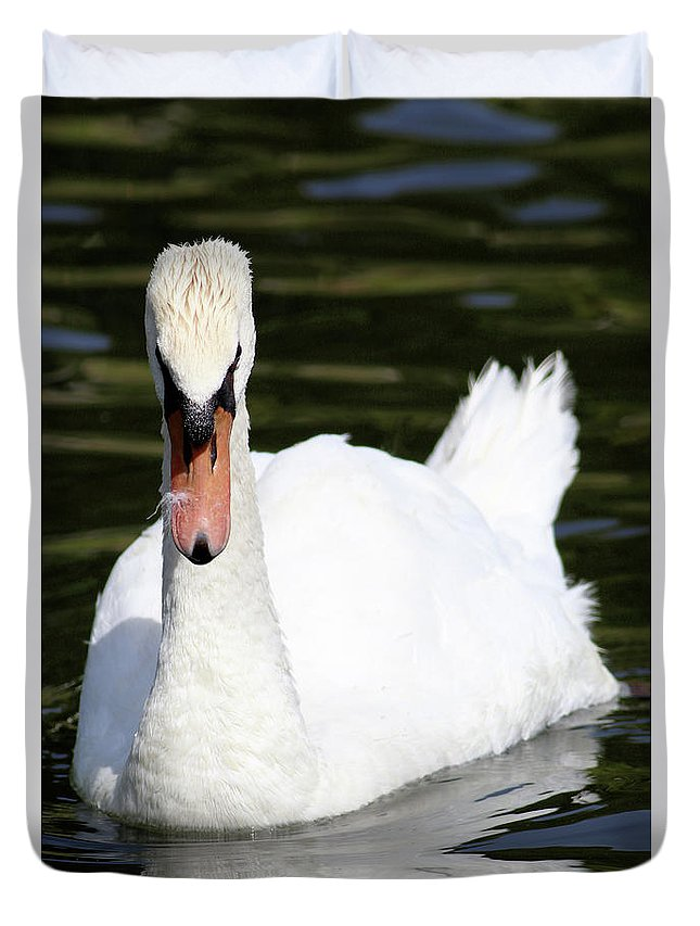 Swan Duvet Cover featuring the photograph Mute Swan Feathers Of Lake Junaluska North Carolina by Carol Montoya