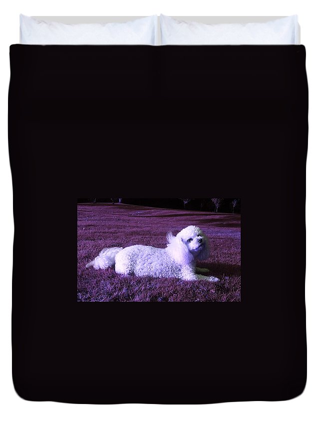 Fantasy Duvet Cover featuring the photograph My Best Side In Pink Dusk by Rowena Tutty