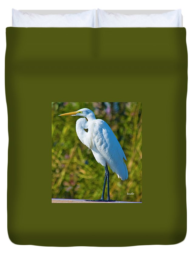 Great White Egret Duvet Cover featuring the photograph My Better Side by Betsy Knapp