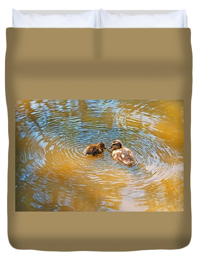 Mallard Duck Duvet Cover featuring the photograph My Childhood Was There, It Was A Marvel... by Asbed Iskedjian