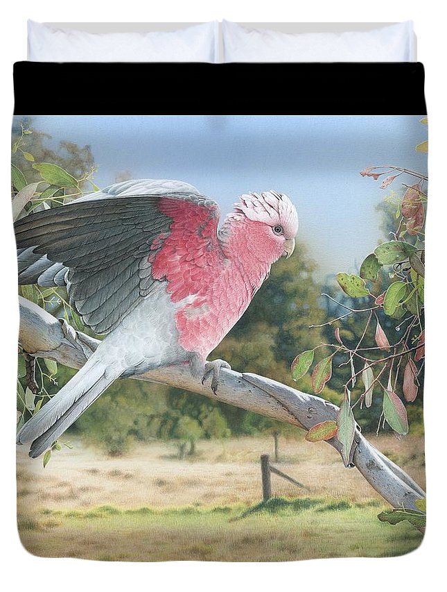 Galah Duvet Cover featuring the painting My Country - Galah by Frances McMahon