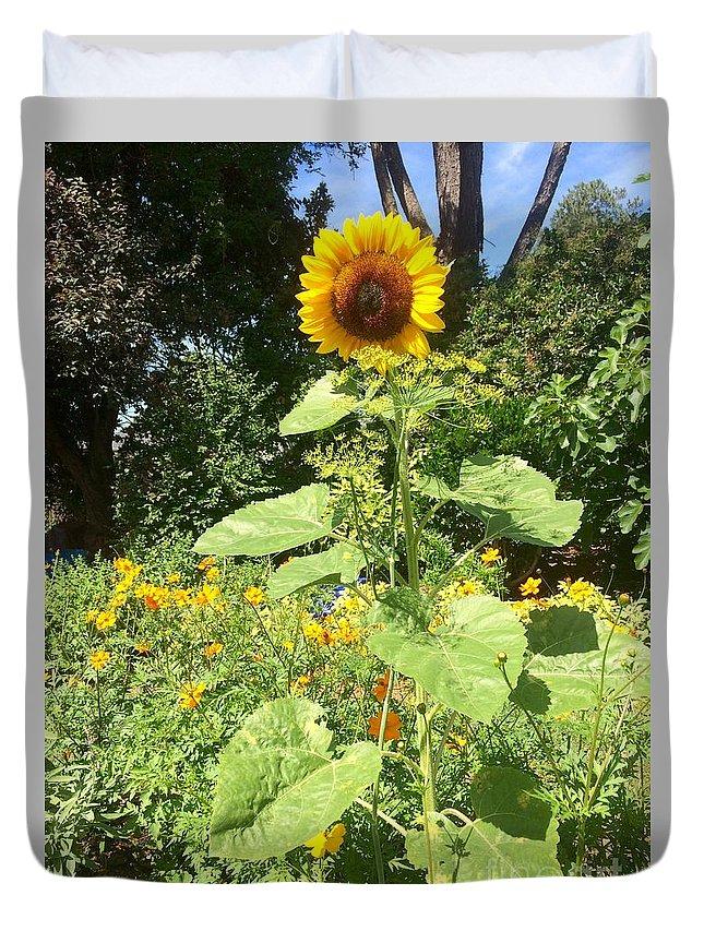 Sinflower Seeds Duvet Cover featuring the digital art My Own Sun In My Backyard by Viktoriya Sirris