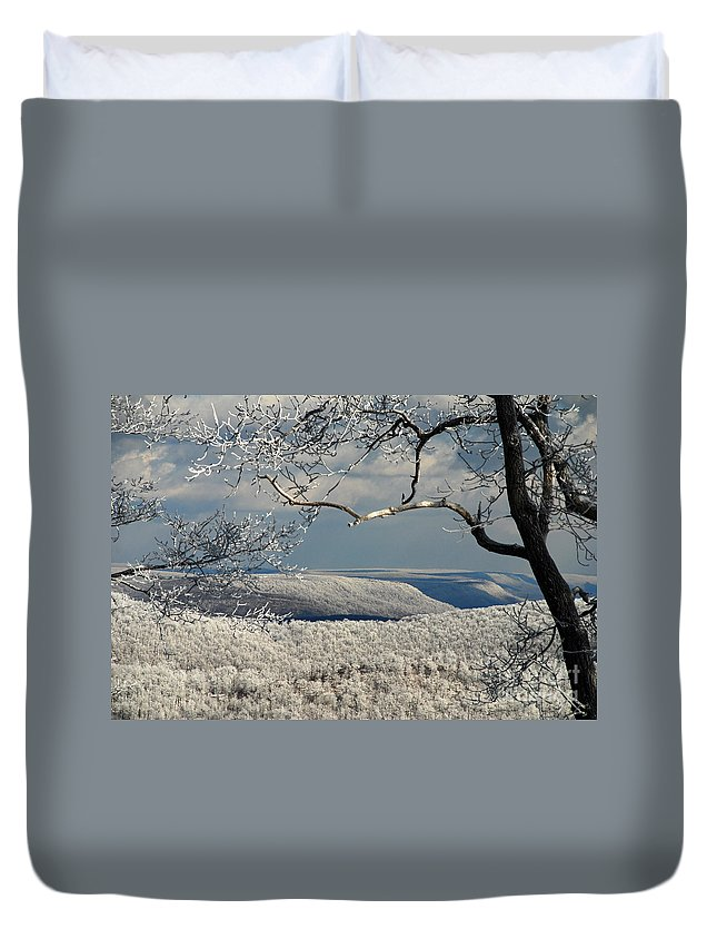 Winter Duvet Cover featuring the photograph My Sunday by Lois Bryan