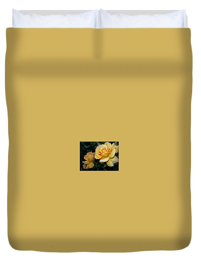 Nature Duvet Cover featuring the photograph My Yellow Rose by Timothy Porter