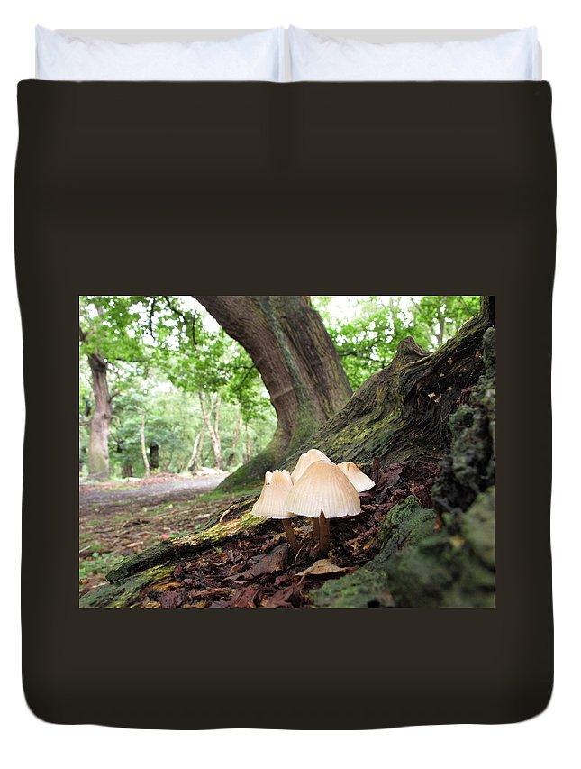 Fungi Duvet Cover featuring the photograph Mycena by Bob Kemp