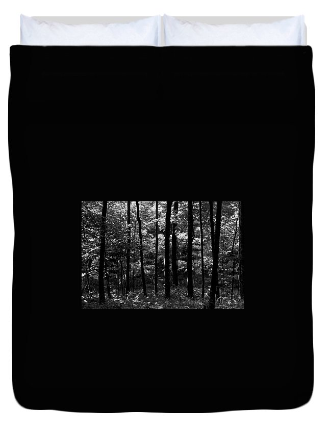 Forest Duvet Cover featuring the photograph Mysterious Forest by Dale Chapel
