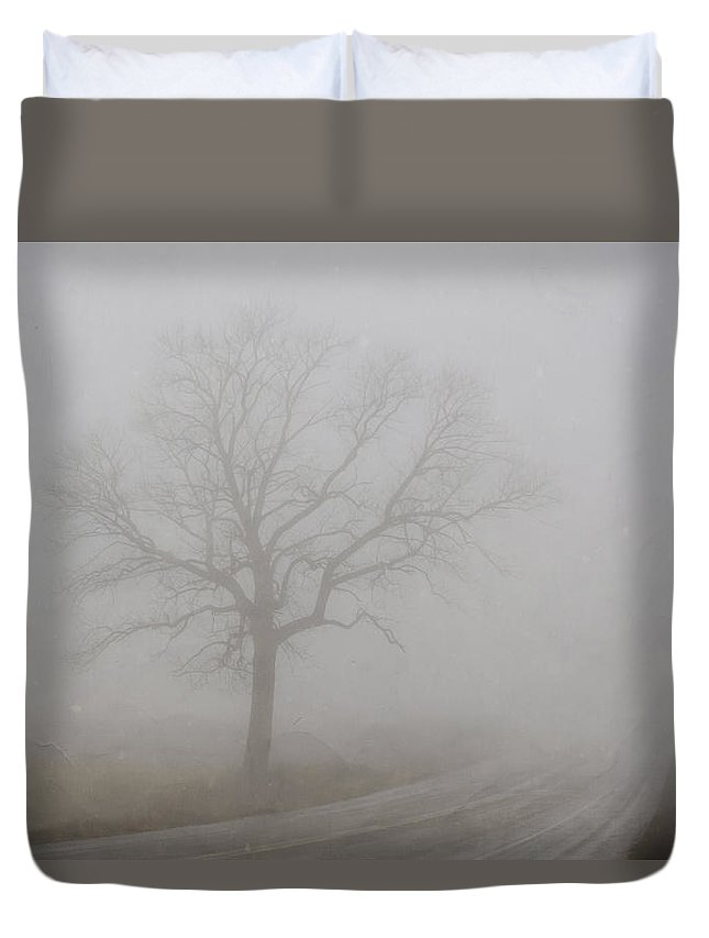 Landscape Duvet Cover featuring the photograph Mystery Road 2 by Steve L'Italien