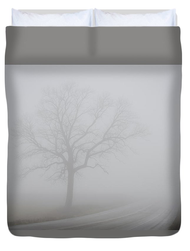 Landscape Duvet Cover featuring the photograph Mystery Road by Steve L'Italien