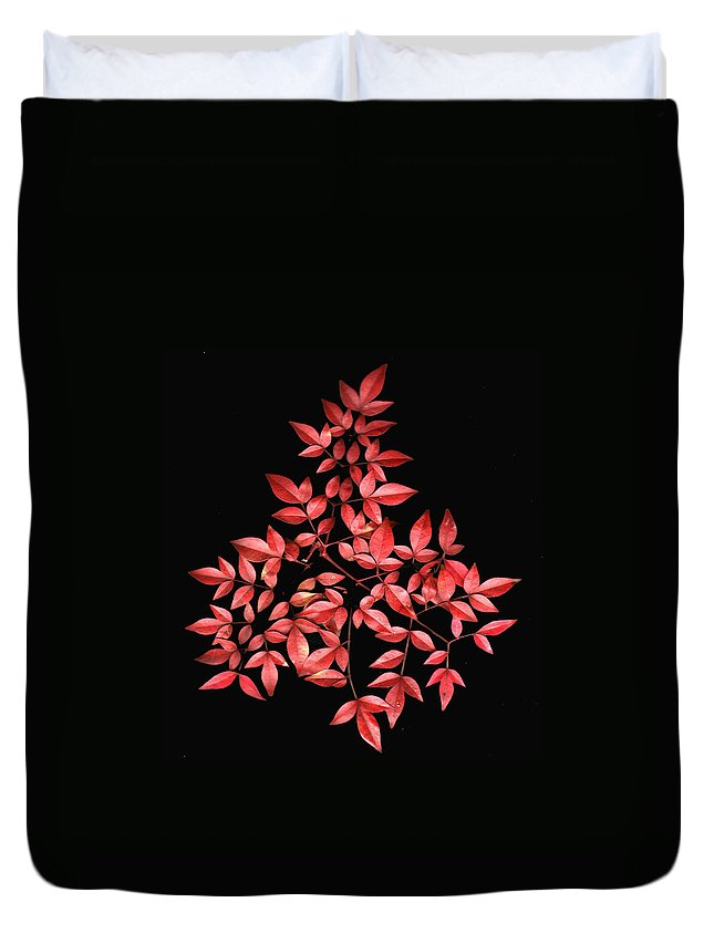 Leaves Duvet Cover featuring the photograph Nadina Branch by Wayne Potrafka