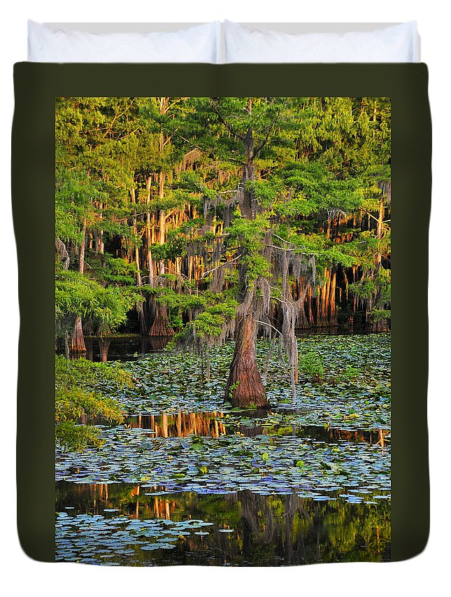 Bog Duvet Cover featuring the photograph Naked by Skip Hunt