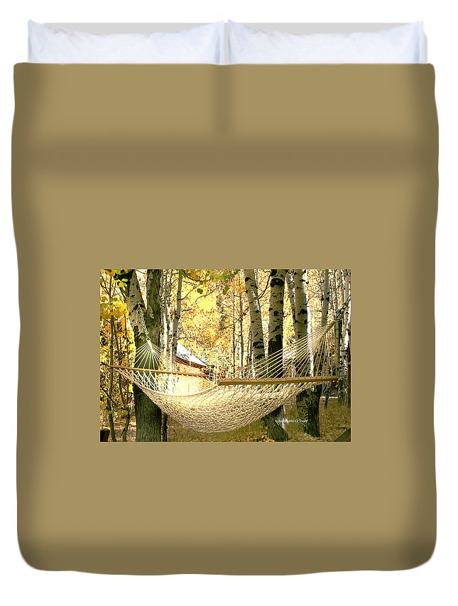 Fall Colors Duvet Cover featuring the photograph Nap Time On A Fall Day by Judithann O'Toole
