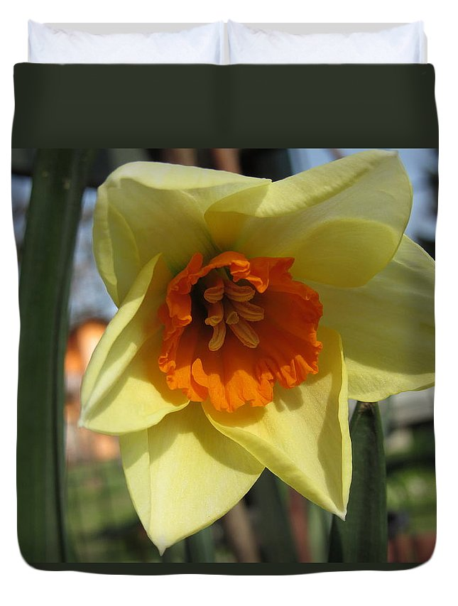 Flowers Duvet Cover featuring the photograph Narcissus by Vesna Martinjak