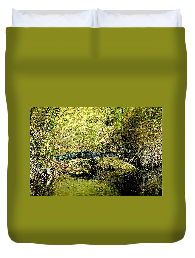 Art Duvet Cover featuring the painting Native Evergladien by David Lee Thompson
