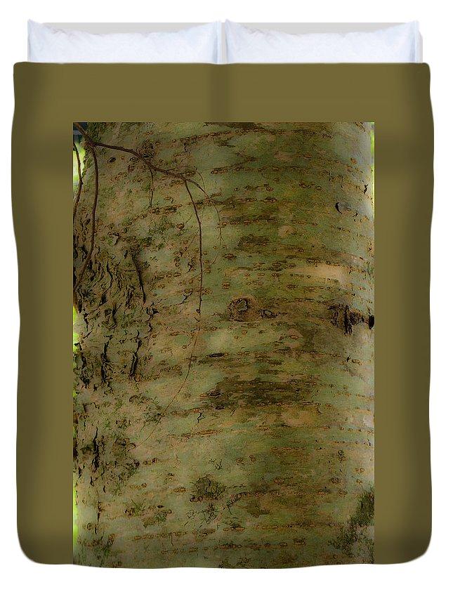 Joy Duvet Cover featuring the photograph Native Tree by Douglas Barnett