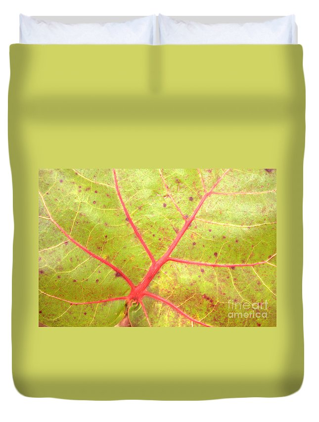 Seagrape Leaf Duvet Cover featuring the photograph Nature Abstract Sea Grape Leaf by Carol Groenen