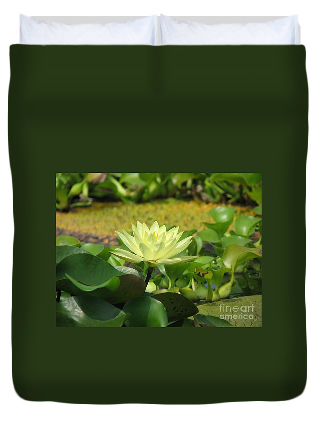 Nature Duvet Cover featuring the photograph Nature by Amanda Barcon