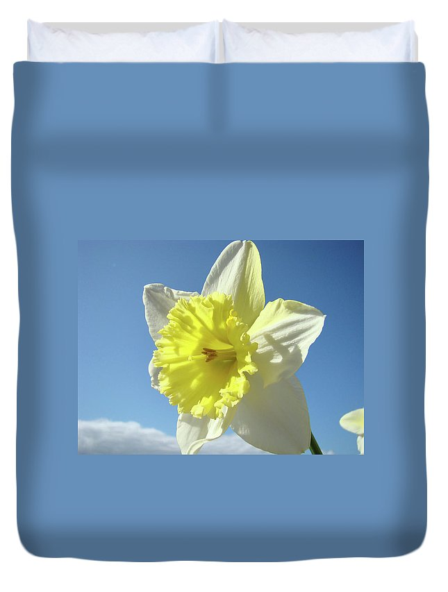 �daffodils Artwork� Duvet Cover featuring the photograph Nature Daffodil Flowers Art Prints Spring Nature Art by Baslee Troutman
