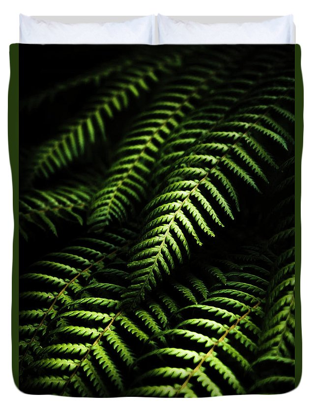 Frond Duvet Covers