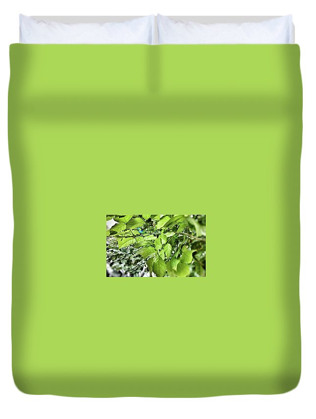 Duvet Cover featuring the photograph Nature's Beauty by Jyoti Anand