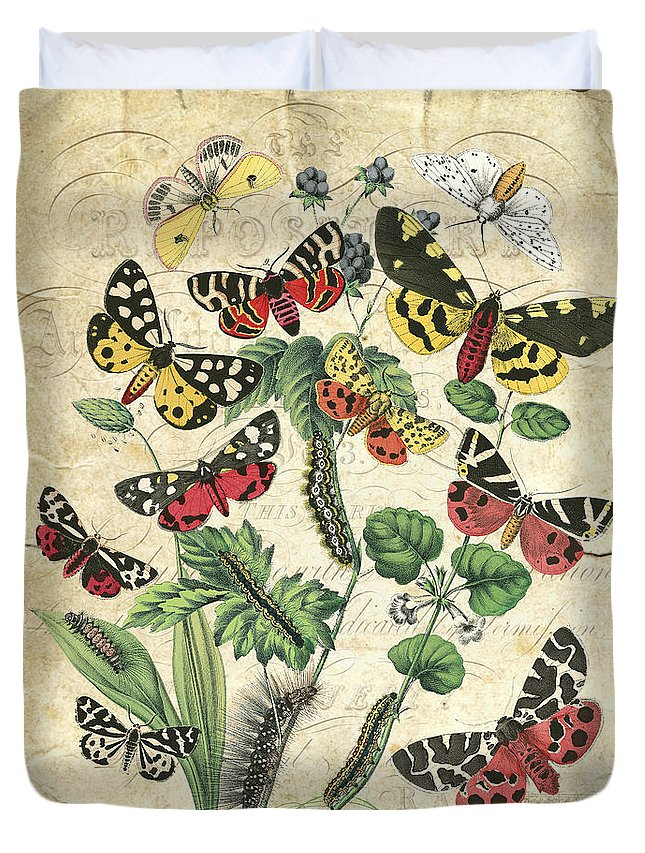 Butterfly Duvet Cover featuring the digital art Natures Beauty-no.2 by Jean Plout