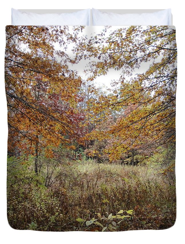 Autumn Landscape Duvet Cover featuring the photograph Nature's Expression-10 by Leonard Holland