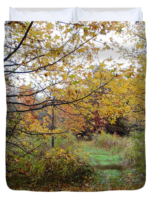 Autumn Landscape Duvet Cover featuring the photograph Nature's Expression-12 by Leonard Holland