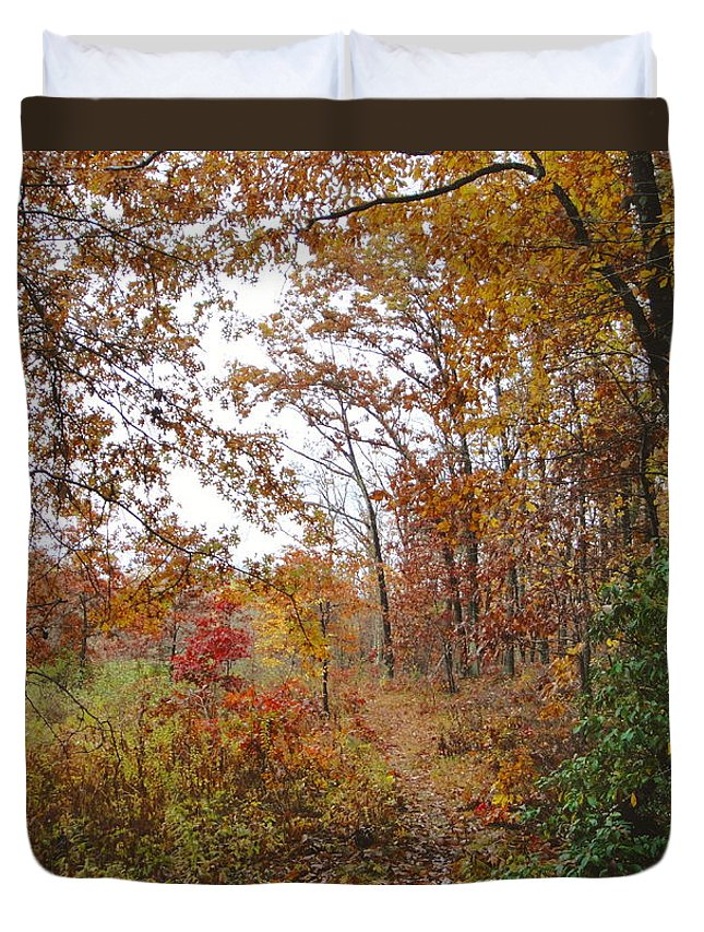 Autumn Landscape Duvet Cover featuring the photograph Nature's Expression-2 by Leonard Holland