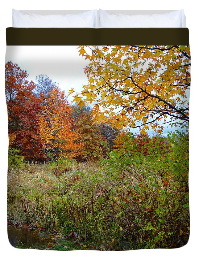 Autumn Landscape Duvet Cover featuring the photograph Nature's Expression-3 by Leonard Holland