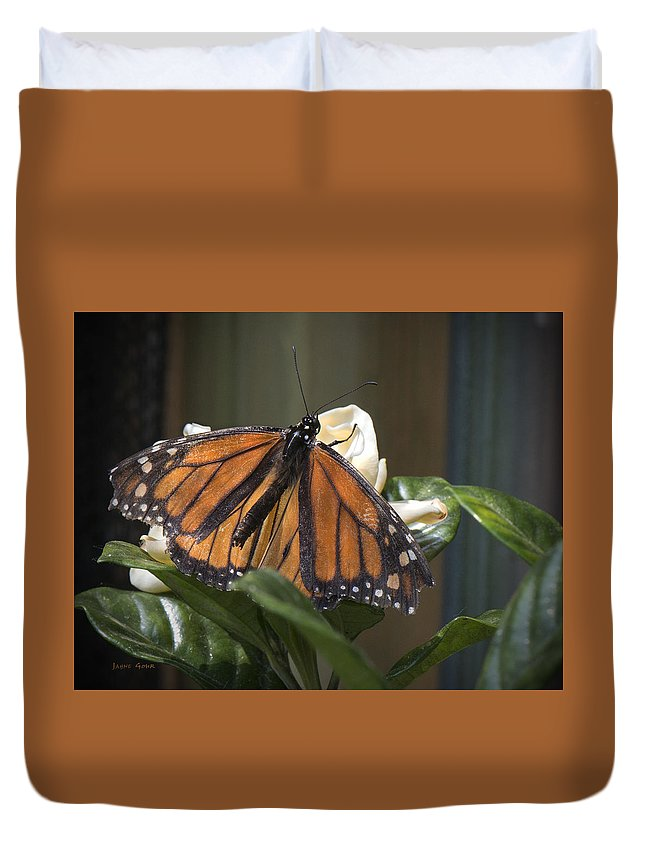 Monarch Duvet Cover featuring the photograph Nature's Glory by Jayne Gohr