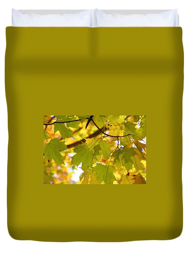 Leaves Duvet Cover featuring the photograph Natures Glow by Ed Smith