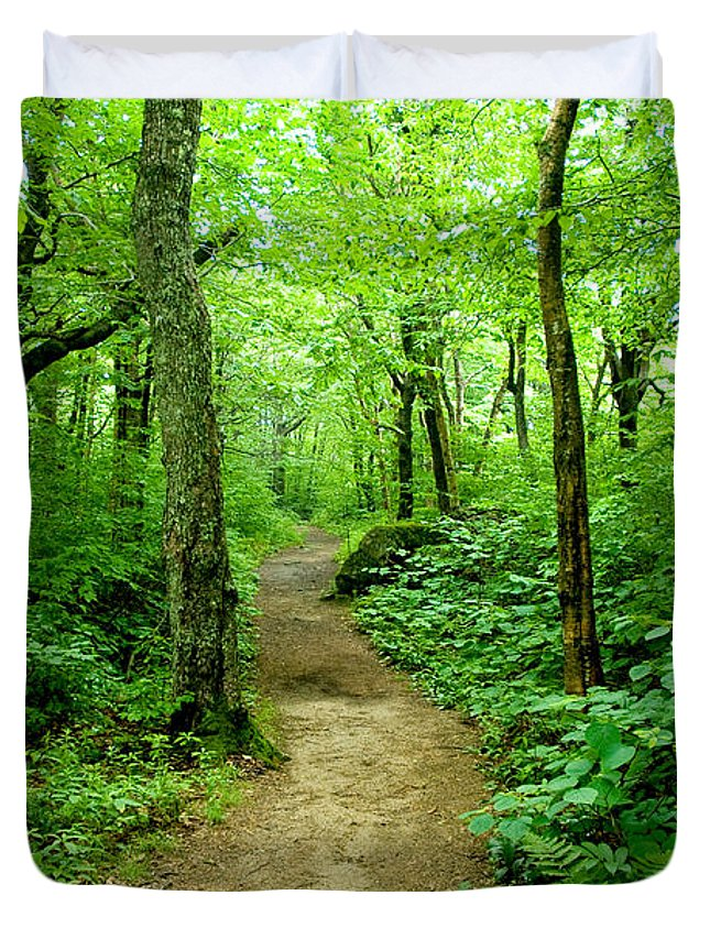 Trees Duvet Cover featuring the photograph Nature's Path by Greg Fortier
