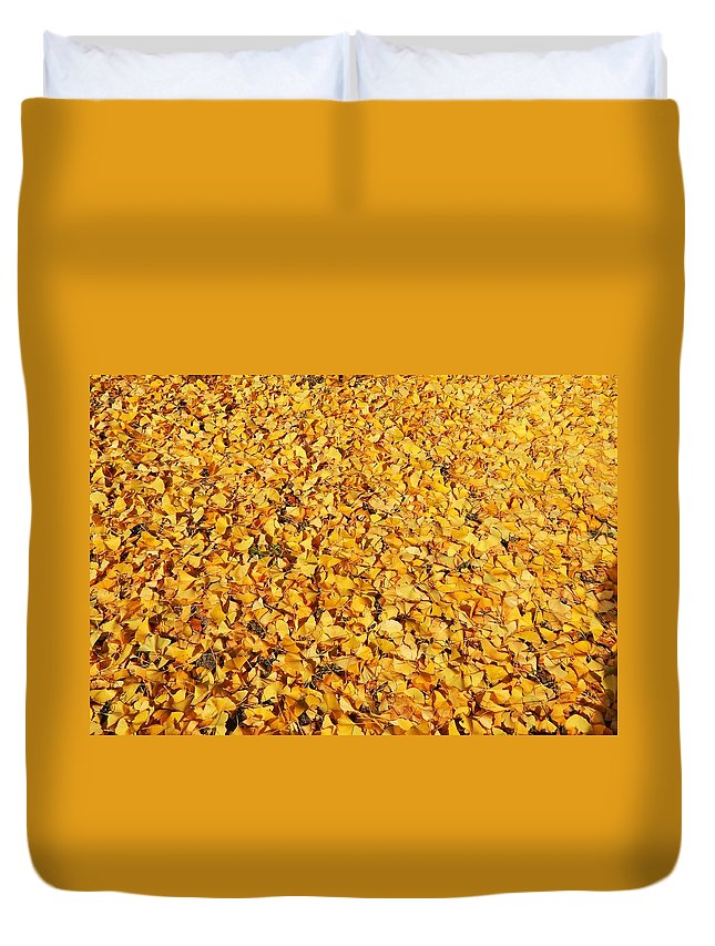Gingko Leaves Duvet Cover featuring the photograph Nature's Sunshine Leaves by Jan Gelders